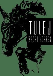 Konie Tulej hodowla koni sportowych