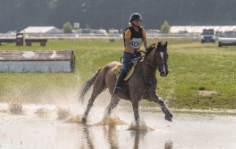konie-sportowe-Tulej-Mattes-wspolpraca