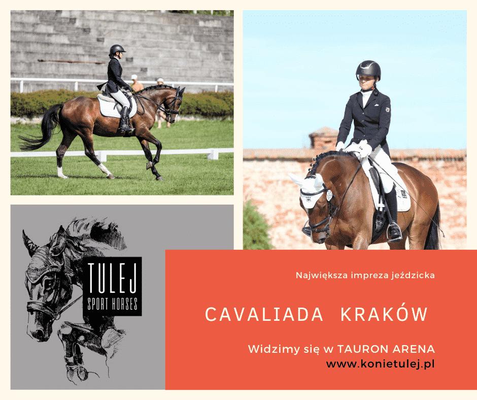 Cavaliada Kraków 2020 – największe wydarzenie jeździeckie