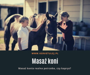 Masaz-koni-tulej