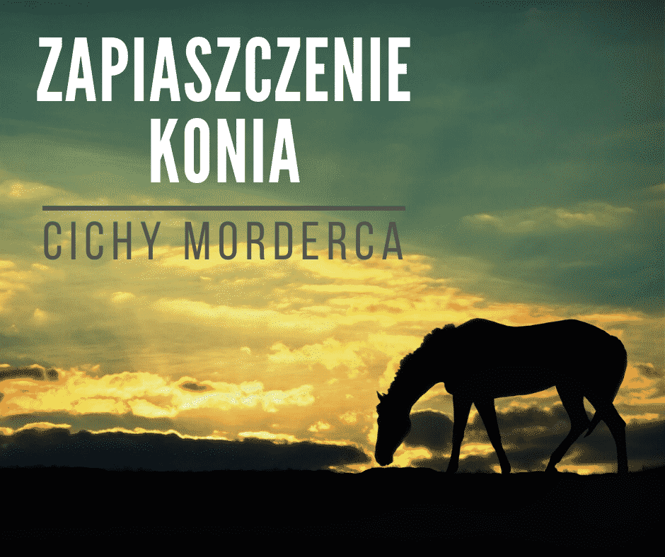 Zapiaszczenie konia – piasek cichy morderca