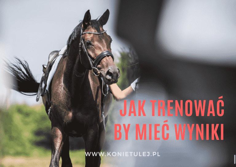 trening-konia-sportowego-Tulej
