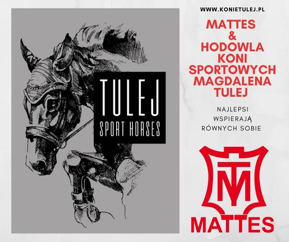 konie-tulej-mattes